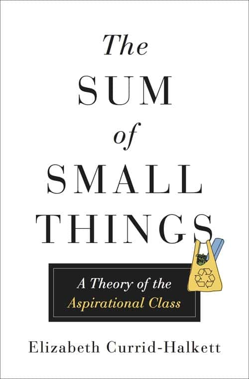 THE SUM OF SMALL THINGS by Elizabeth Currid-Halkett